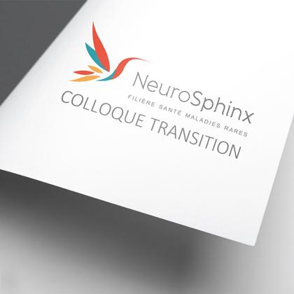 Colloque Transition Neurosphinx - Adolescents et Maladies Rares : Quelles perspectives communes pour une transition réussie ?