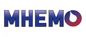 Filière de Santé Maladies Rares Maladies Hémorragiques Constitutionnelles (MHémo)