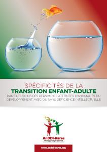 Spécificités de la transition enfant-adulte dans les soins des personnes atteintes d'anomalies du développement avec ou sans déficience intellectuelle
